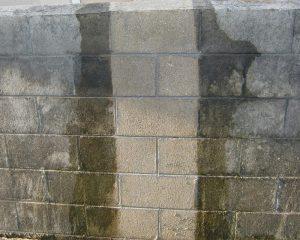コンクリートブロック塀のカビ