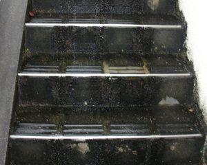 コンクリート階段のリフレッシュ工事ビフォー