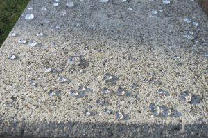 コンクリート打ちっぱなしの風合が蘇り美観も長期損なわない施工が可能です。