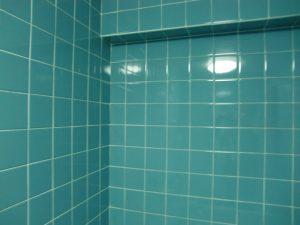 お風呂(浴室)のカビ退治は大変な作業です。