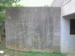 外壁は、ほとんどが黒カビです。