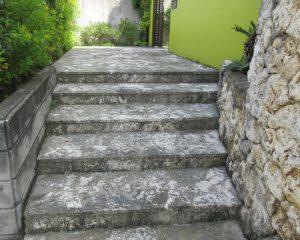 琉球石灰岩は水を吸いやすい為、黒カビが発生し美観も損ないます。
