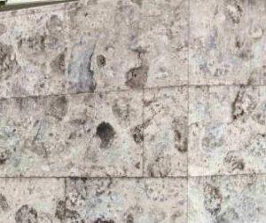 琉球石灰岩の特殊コーティングビフォー