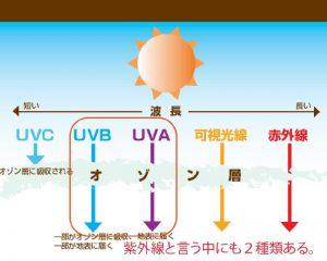 紫外線カットコーティングが効果的です。