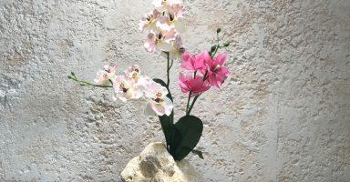 琉球石灰岩アレンジメント作品蘭花