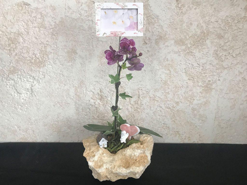 琉球石灰岩アレンジメント 贈答品