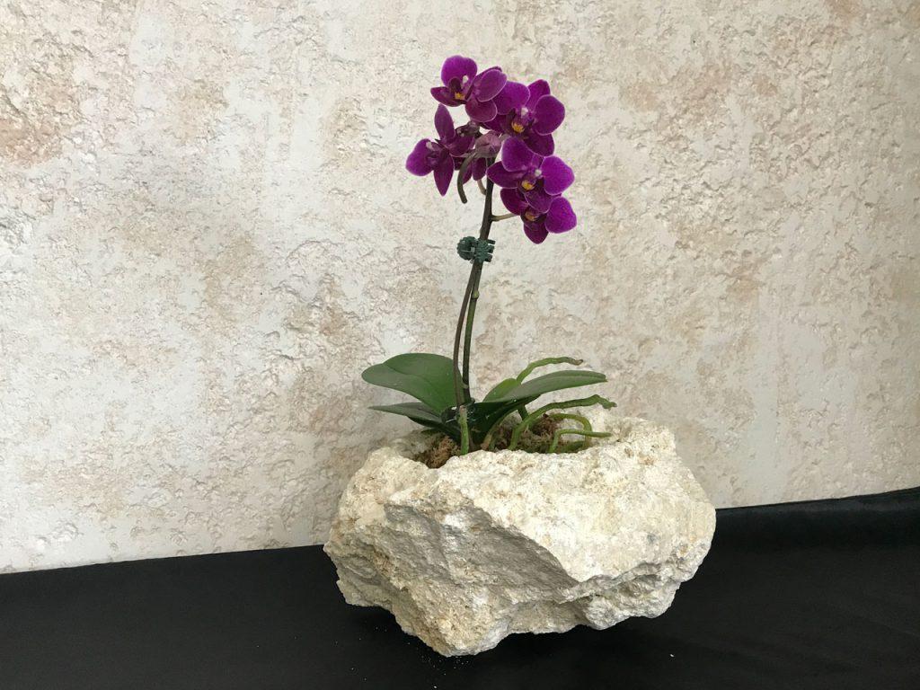 琉球石灰岩アレンジメント 特殊加工で花が長持ちとアロマの香り