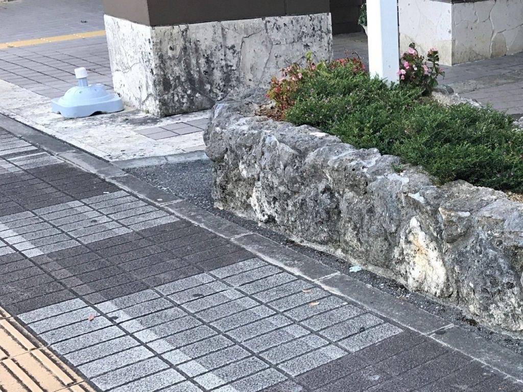 琉球石灰岩Before(ビフォー)