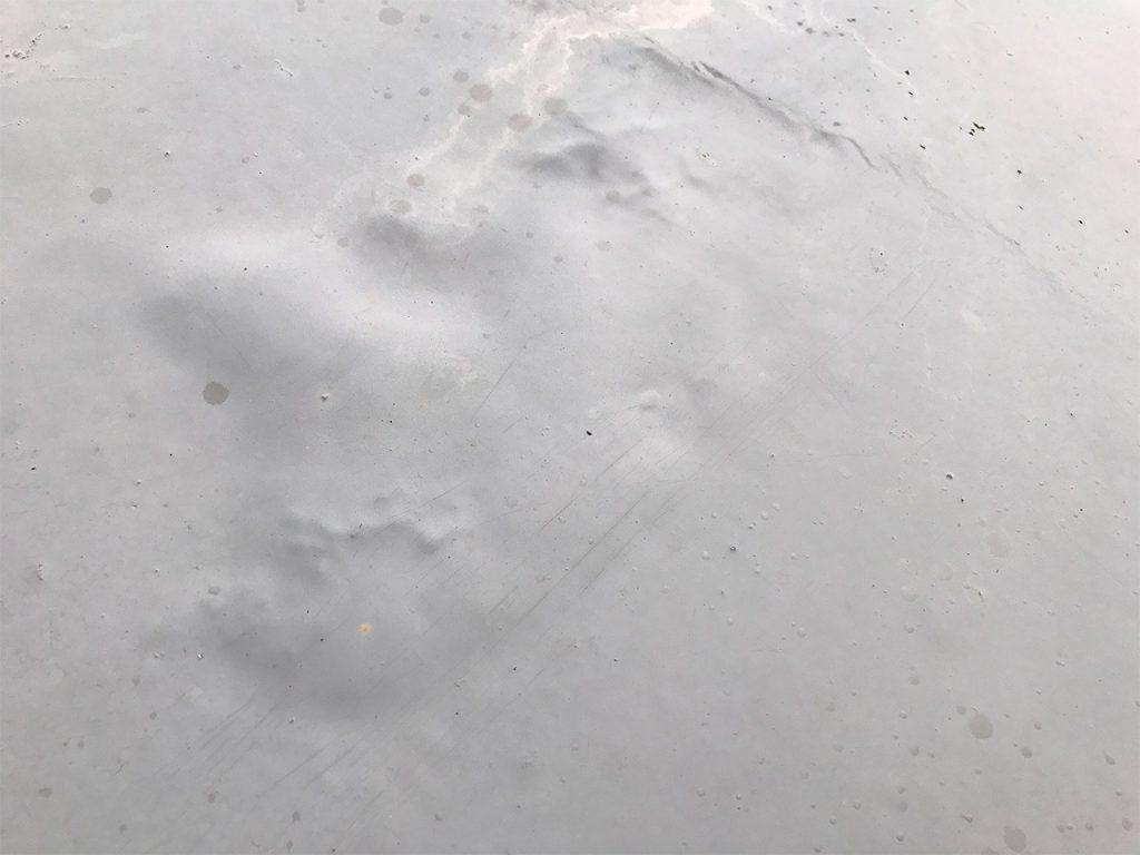 経年劣化した塗膜型防水塗料の膨れ