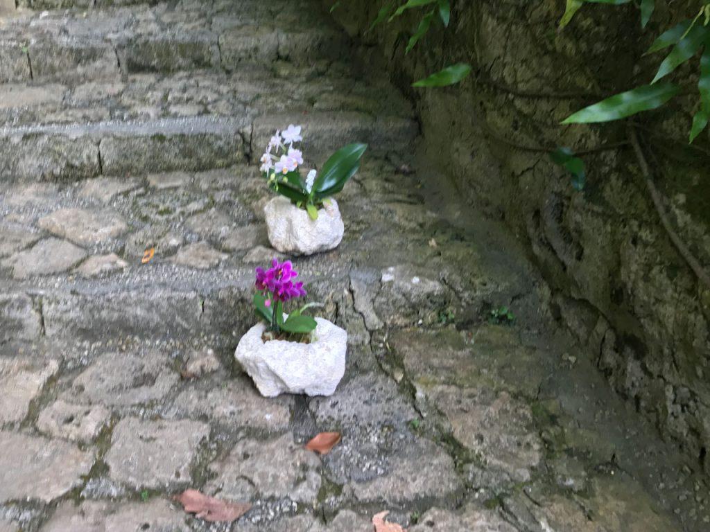 琉球石灰岩アレンジメント 白い琉球石灰岩と胡蝶蘭 首里城石畳にあったらいいね!