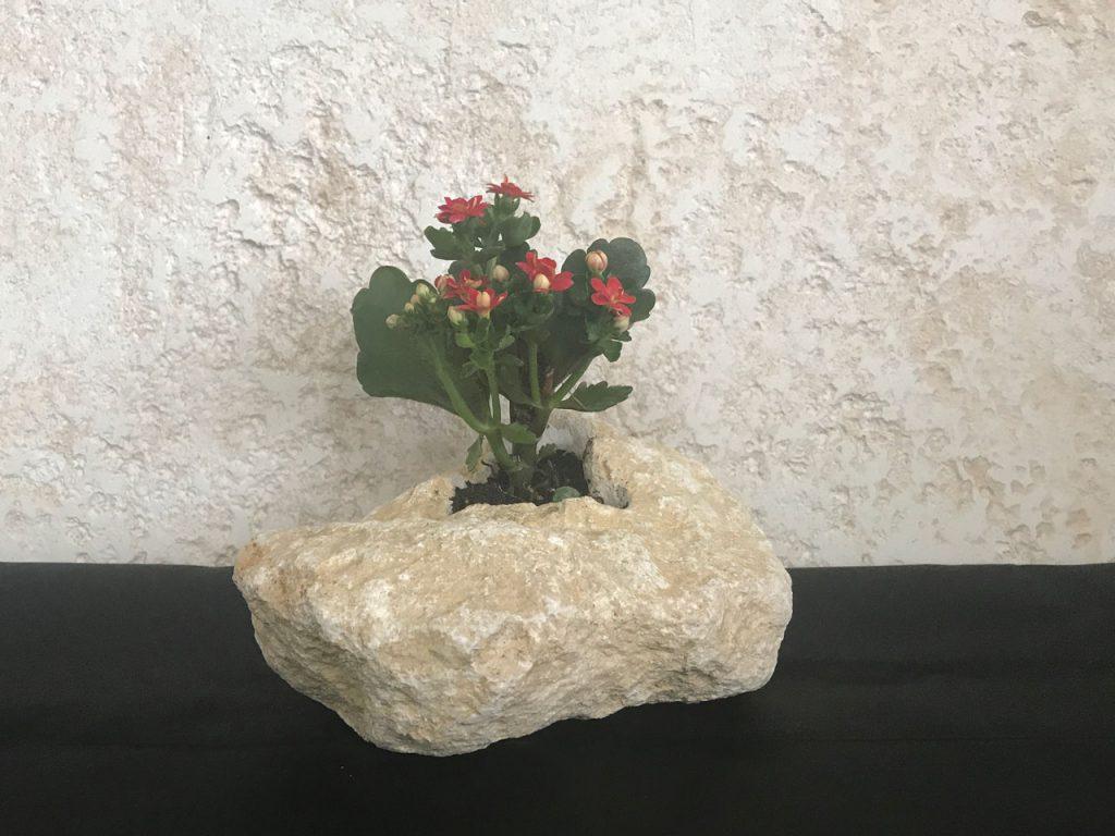 琉球石灰岩アレンジメント 贈答品 トーアフラワー