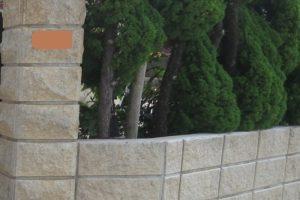 防カビ実験のコーティング施工から4年経過した門