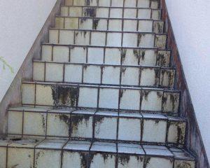 外にある階段タイル(段鼻タイル)は、経年するとカビや汚れ変色劣化。