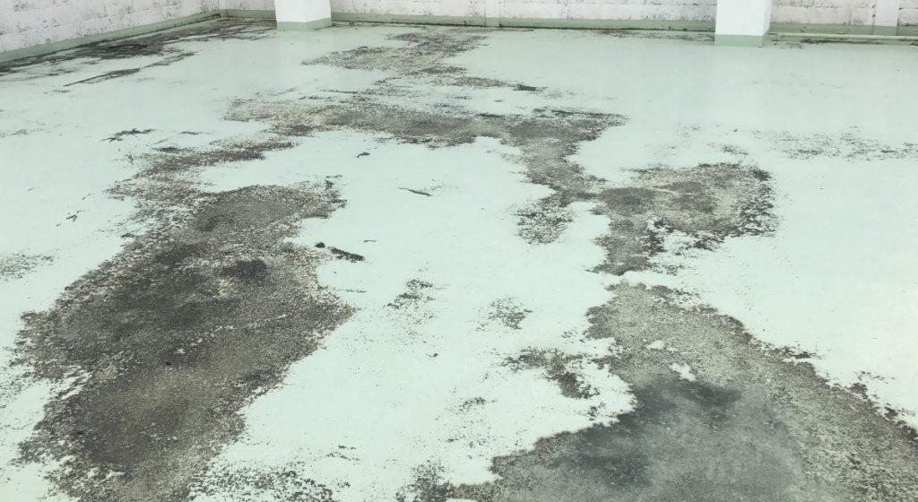 紫外線や塩害を受けた防水塗料の剥がれた状態