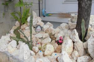 琉球石灰岩のガーデンアレンジメント